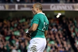 Simon Zebo celebrates his try for Ireland