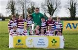AVIVA Mini Rugby Festival, Portlaoise RFC, Laois 11/4/2015 Tullow RFC