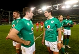 Leinster's Luke McGrath and Joey Carbery ended the game together at half-back for Ireland Credit: ©INPHO/James Crombie